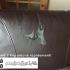 Reparar un sofá de cuero o piel sintética con Masta Plasta
